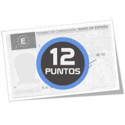 Consulta saldo de puntos del carnet de conducir