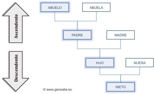 Línea de sucesión recta